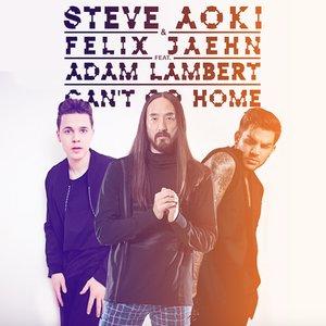 Image for 'Steve Aoki & Felix Jaehn feat. Adam Lambert'
