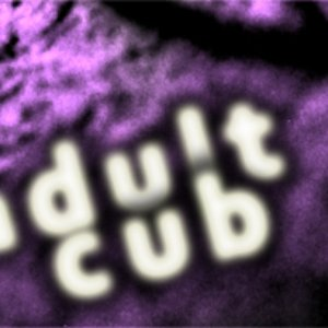 Image for 'Adult Cub'