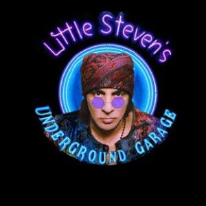 Image for 'Little Stevens Underground Garage'