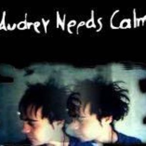 Image for 'audrey needs calm'