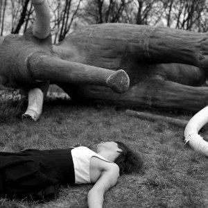 Image for 'Margareth Kammerer'