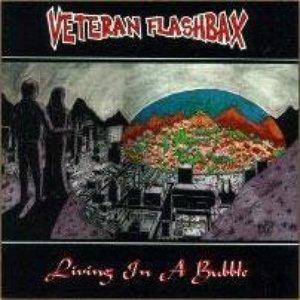 Image for 'Veteran Flashbax'