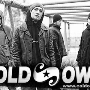 Immagine per 'Cold Own'