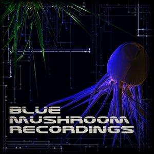 Image for 'Blue Mushroom Recordings'