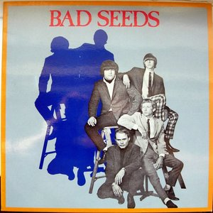 Image for 'The Bad Seeds'