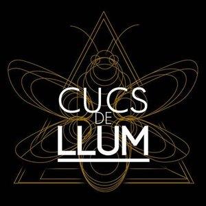 Image for 'Cucs de Llum'