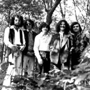 Bild für 'Stalk-Forrest Group'
