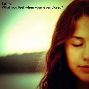 Image for 'Spline'