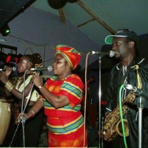 Image for 'The Afrigo Band'