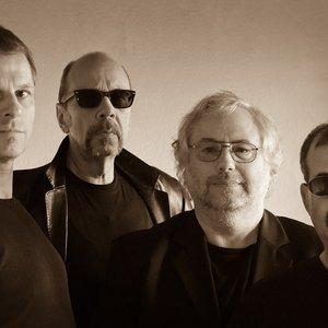 Image pour 'Intoxigation Blues Band'
