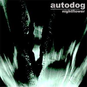Image for 'Autodog'