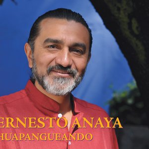 Image for 'Ernesto Anaya'