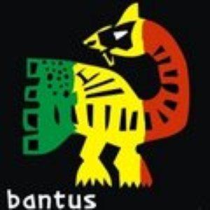 Image for 'bantus reggae'