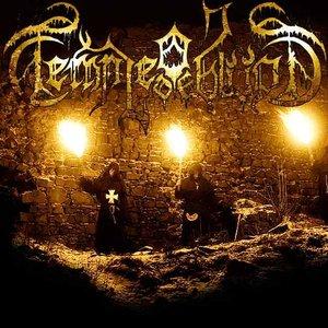 Bild för 'Temple of Oblivion'