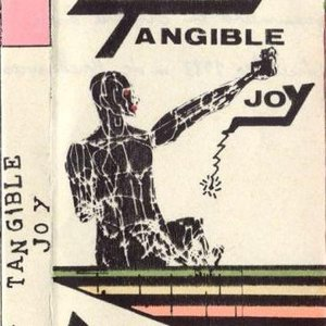 Image for 'Tangible Joy'