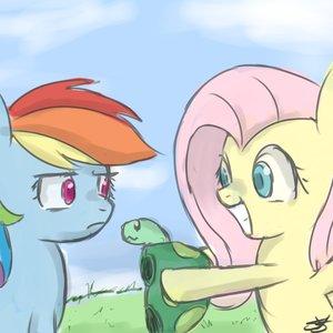 Imagem de 'Fluttershy & Rainbow Dash'