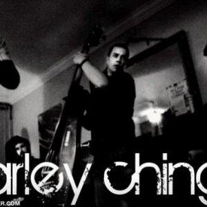 Bild för 'Marley Chingus'