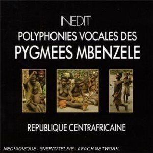 Image for 'Pygmees Mbenzele'