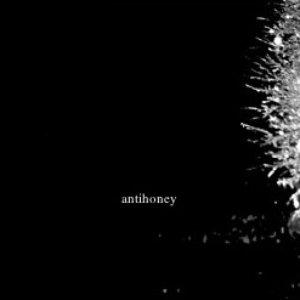 Image for 'antihoney'