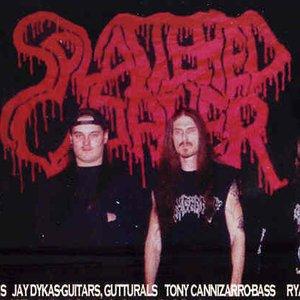 Imagen de 'Splattered Cadaver'