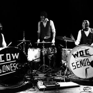 Bild för 'Cowbones'