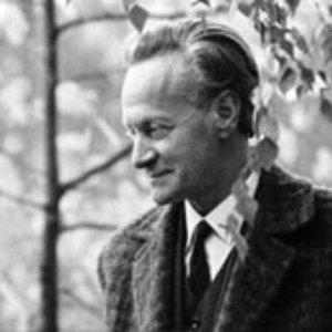 Image for 'Adolf Skulte'