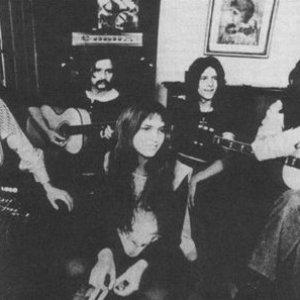 Bild för 'The Woods Band'