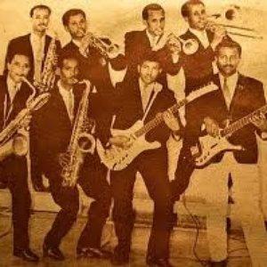 Image pour 'Wallias Band'