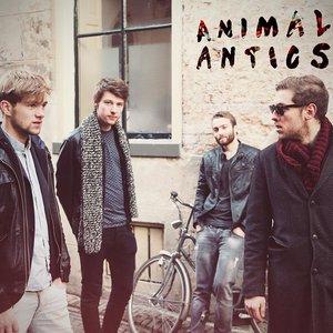 Image for 'Animal Antics'