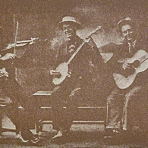 Image pour 'Taylor's Kentucky Boys'