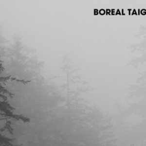 Image for 'Boreal Taiga'
