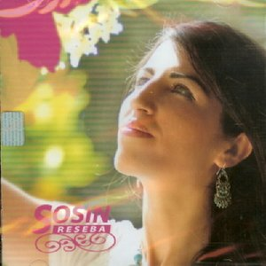 Image for 'SOSIN'