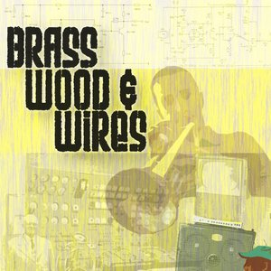 Image for 'Brass Wood & Wires'
