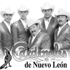 Image for 'Cardenales De Nuevo León'