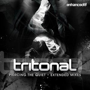 Image for 'Tritonal feat. Bethany'
