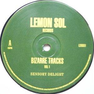 Image for 'Bizarre Tracks'