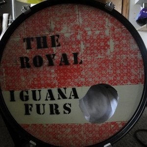Image for 'The Royal Iguana Fur'