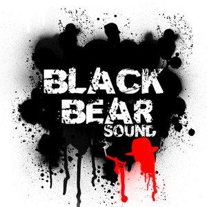 Image for 'Black Bear Sound'