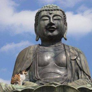 Imagem de 'Relaxing Mindfulness Meditation Relaxation Maestro'
