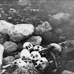 Image for 'Among The Bones'