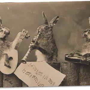 Image for 'Geraldo Trio'