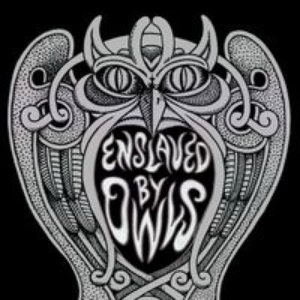 Image for 'ENslaved by Owls'