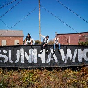 Image for 'Sunhawk'