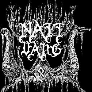 Image for 'Nattvarg'