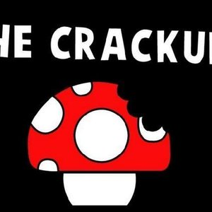 Image for 'The Crackups'