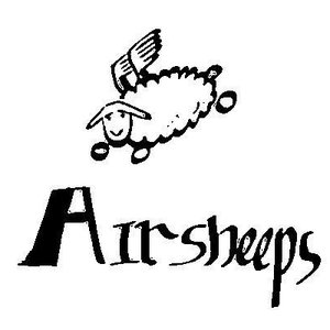 Image for 'Airsheeps'