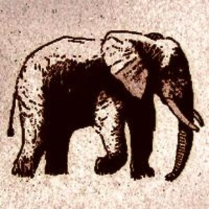 Image for 'An Elephant Never Forgets'