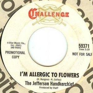 Image for 'Jefferson Handkerchief'
