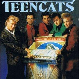 """""""Teencats""""的封面"""