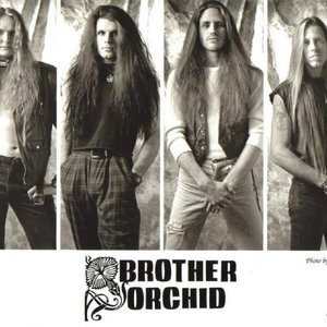 Immagine per 'Brother Orchid'